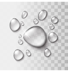 Transparent water drop vector image
