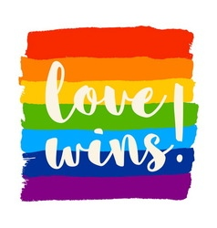 Love wins poster vector