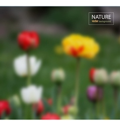Floral blurred photo background vector