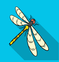 A dragonfly a predatory insectdragonfly flying vector
