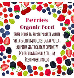 cartoon berries menu organic healthy product vector image