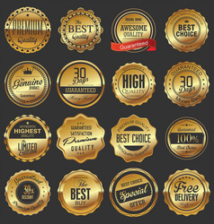 luxury quality golden badge retro collection vector image