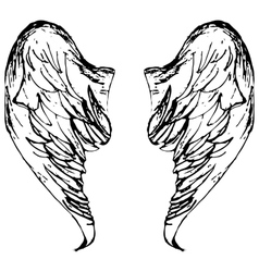 Wings sketch cartoon vector image