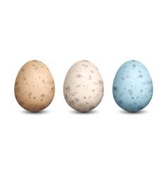 Set of quail eggs vector