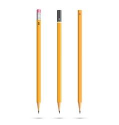 Three pencils vector image