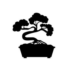 Bonsai japanese tree vector image