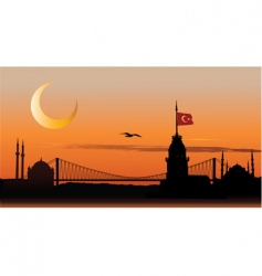 Silhouette of istanbul at sunset vector
