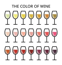 The color of wine - different shade of white rose vector