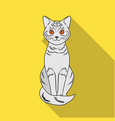 gray catanimals single icon in flat style vector image