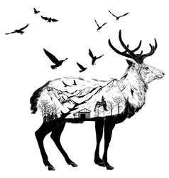 Hand drawn Deer for your design wildlife concept vector image vector image