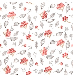 Rowan and leaves seamless white pattern vector