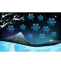 Snowflakes falling on the ground vector image