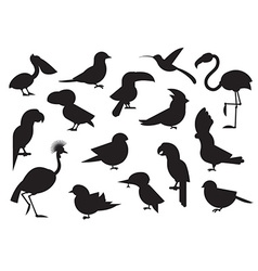 World Birds Outline Icons vector image