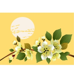 Spring all wakes up flowers sakura vector image