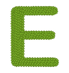 Four leaf clover of alphabet letter e vector