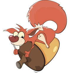 A squirrel and an acorn cartoon vector