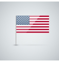 Flag of the usa vector