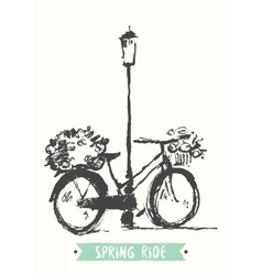 Drawn vintage bicycle sketch vector