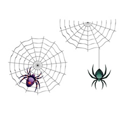 Cartoon spider3 vector