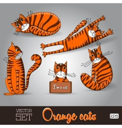 The lovable orange cats set on a vector