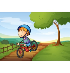 a boy and a bicycle vector image