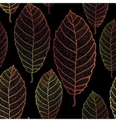 Autumn transparent leaves seamless pattern Dark vector image vector image