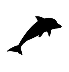 dolphin marine wildlife water animal silhouette vector image