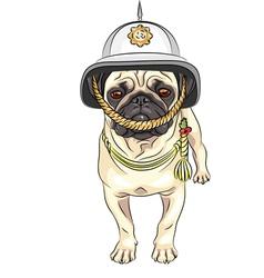 Pug in the british helmet vector