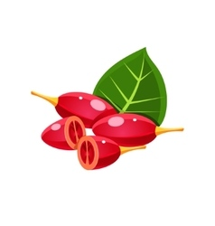 Goji berry flat sticker vector