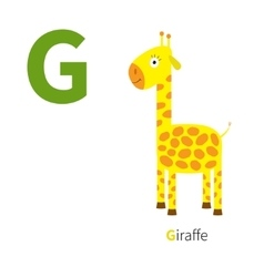 Letter g giraffe zoo alphabet english abc with vector