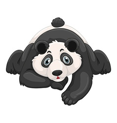 Cute panda crawling on the ground vector