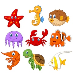 Cartoon fish collection set vector image