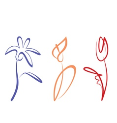 outlined hand drawn flower collection vector image