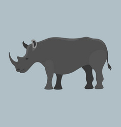 Wildlife rhinoceros mammal isolated rhino big wild vector