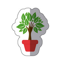 color tree with leaves inside flower pot vector image
