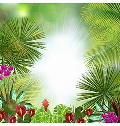 Beautiful tropical background vector