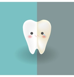 cute tooth which half of it is white happy and vector image