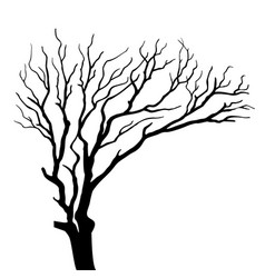 silhouette on tree isolated vector image vector image