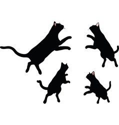 Image - cat silhouette in jumping pose vector