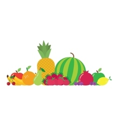Group fruits vector