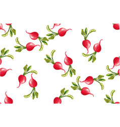 seamless pattern of radishes vector image vector image