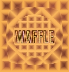 Waffles of different forms with text logo vector