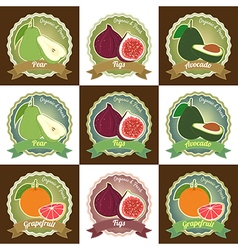 Badge set fresh fruit pear figs avocado grapefruit vector