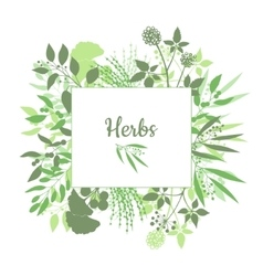 Fresh herbs store emblem green square frame with vector