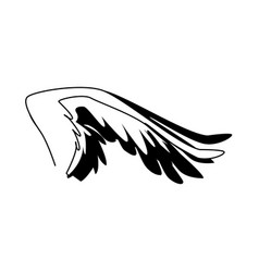 Spread out bird or angel wing feathers icon vector