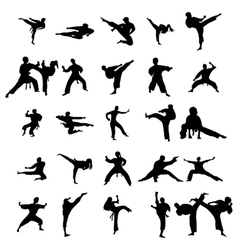 Karate silhouettes set vector