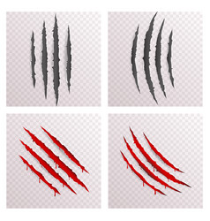 Animal monster claws blood bleeding scratches torn vector