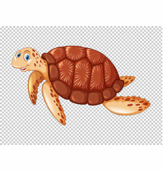 Sea turtle swimming on transparent background vector