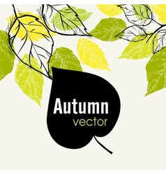 Autumn Leaf Background vector image