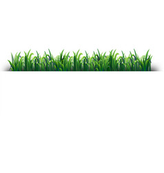 Seamless design with green grass vector